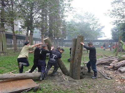 The building of the log wall, courtesy of Animals Asia