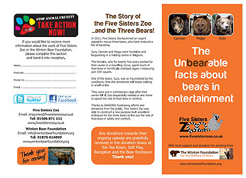 Flyer - Bears in Entertainment