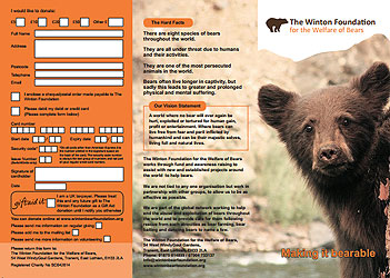 Flyer - Winton Bear Foundation