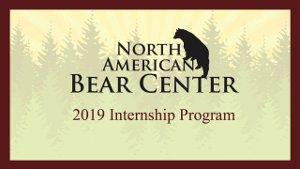 NABC Internship Program