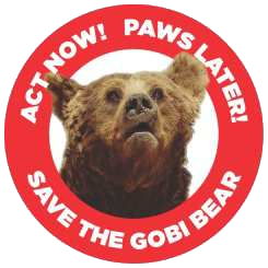 Save the Gobi Bear logo